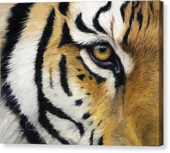 Siberian Cats Canvas Print - Eye Of The Tiger by Lucie Bilodeau