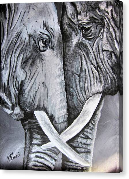 Face To Face Canvas Print by Maris Sherwood