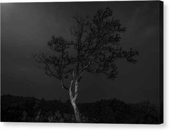 Mauna Loa Canvas Print - Fade To Black by Sean King