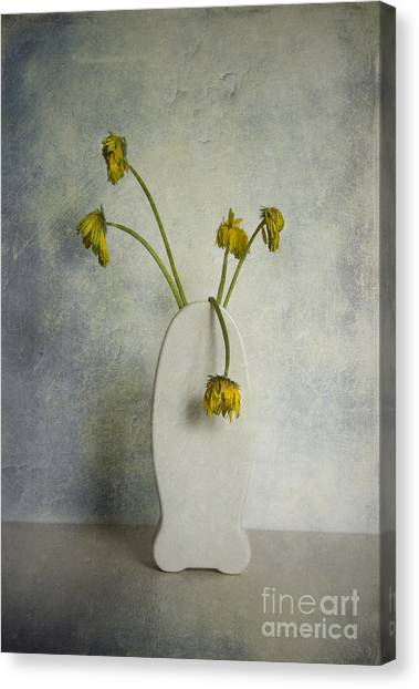 Withered Flowers Canvas Print