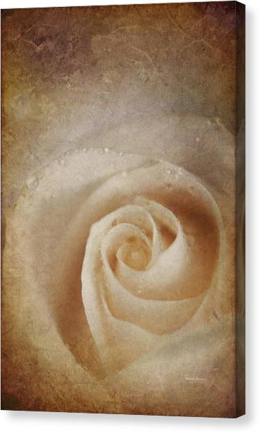 Faded Rose Canvas Print