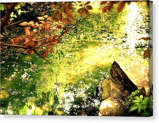 Canvas Print featuring the photograph Fairies by HweeYen Ong