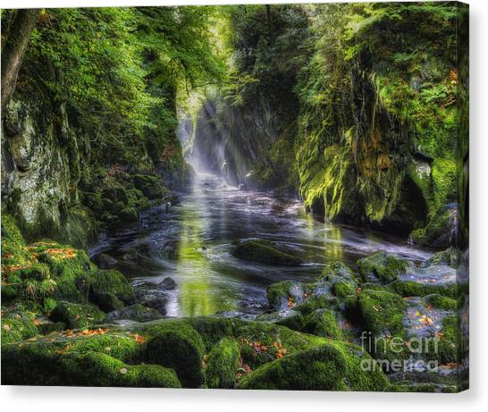 Fairy Glen Canvas Print