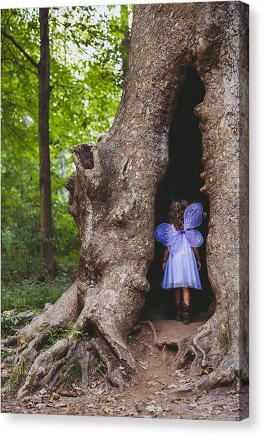 Fairy House Canvas Print by Vanessa Lassin Photography