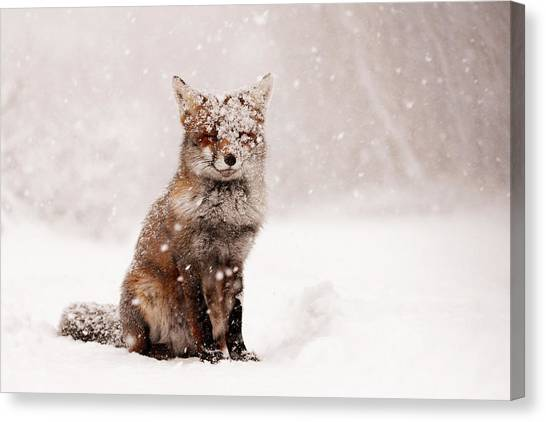 Snow Canvas Print - Fairytale Fox _ Red Fox In A Snow Storm by Roeselien Raimond