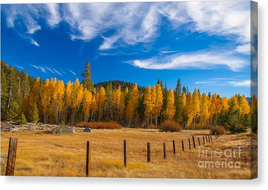 Faithful Fall Canvas Print