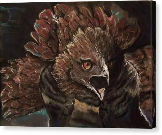 Falcon Opera  Canvas Print