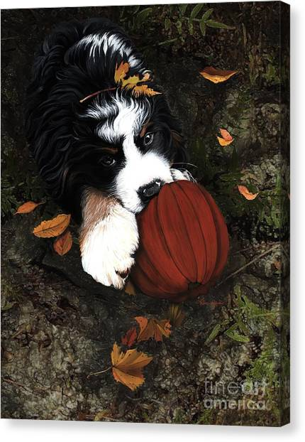 Bernese Mountain Dogs Canvas Print - Fall 4 U by Liane Weyers