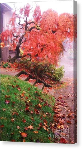 Fall And Fog Canvas Print by Suzanne McKay