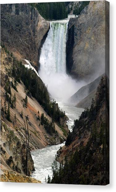 Fall And Stream In Yellowstone Canvas Print