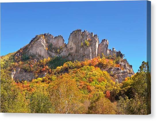 Fall At Seneca Rocks Canvas Print