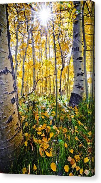 Fall At Silver Lake Canvas Print