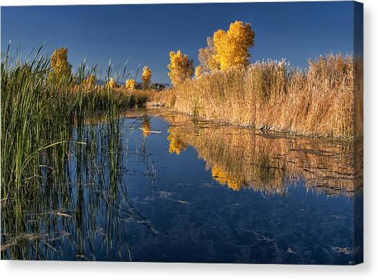 Fall At The Canal Canvas Print