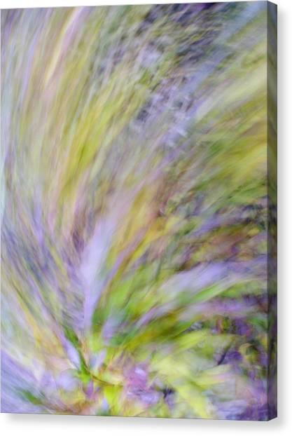 Canvas Print featuring the photograph Autumn Azaleas 2 by Bernhart Hochleitner