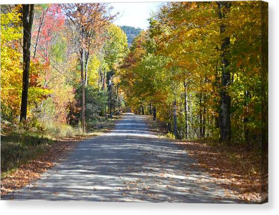 Fall Backroad Canvas Print