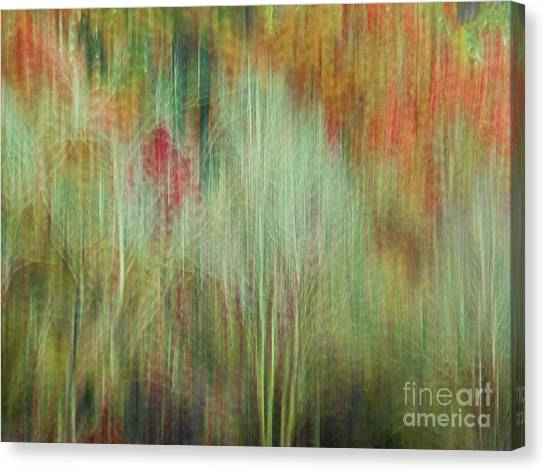 Fall Color Abstract 2 Canvas Print