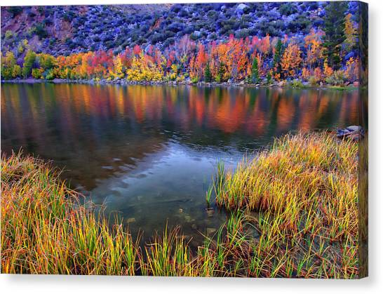 Bishops Canvas Print - Fall Color At Dusk Along North Lake by Scott McGuire