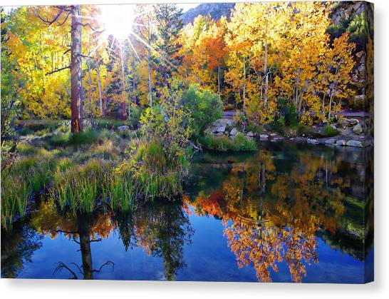 Fall Color Reflection Along Bishop Creek Canvas Print
