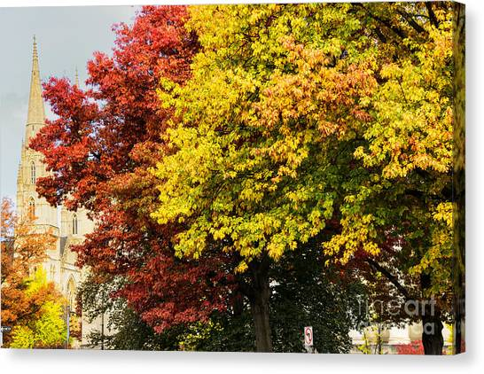 University Of Pittsburgh Canvas Print - Fall Color St Paul Cathedral by Thomas R Fletcher