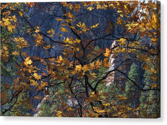 West Fork Tapestry Canvas Print