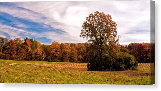 Fall Colors At Poets Walk Park Canvas Print