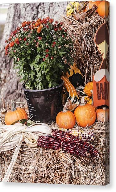 Corn Maze Canvas Print - Fall Colors by Elvis Vaughn