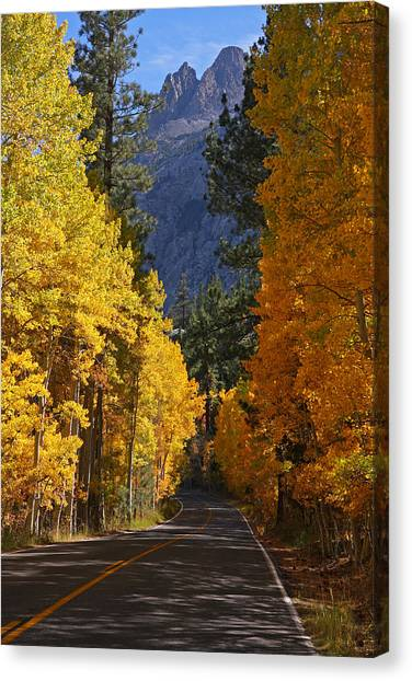 Fall Colors In The Eastern Sierra Nevada Canvas Print