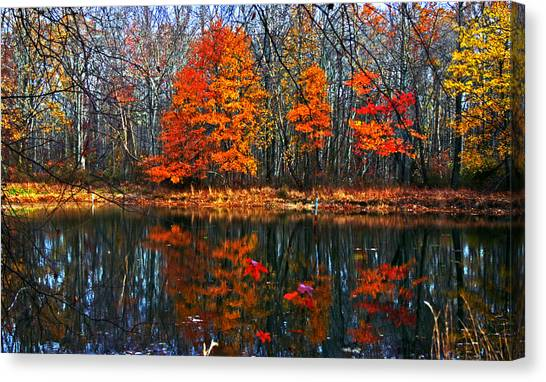 Fall Colors On Small Pond Canvas Print