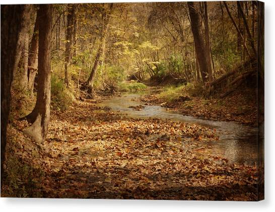 Fall Creek Canvas Print