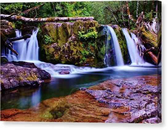 Fall Creek Oregon 3 Canvas Print