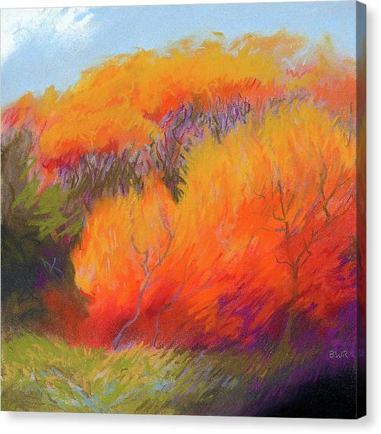 Fall Fire Canvas Print by Bruce Richardson