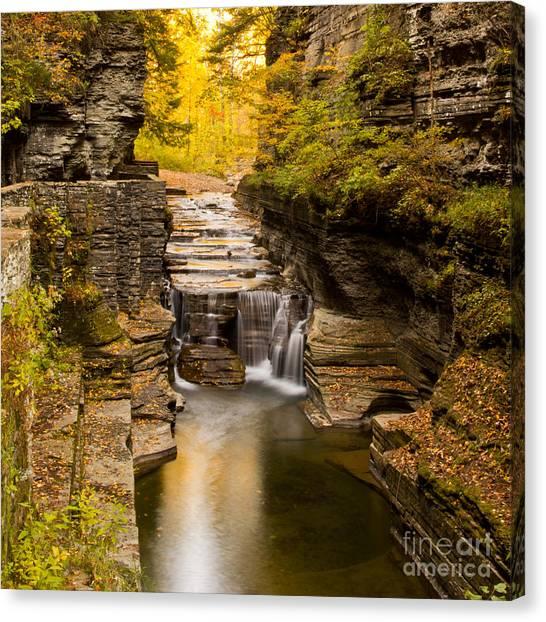 Fall Foliage At Dusk Treman Park Canvas Print