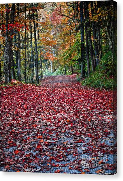 Country Roads Canvas Print - Fall Foliage In Thetford Vermont by Edward Fielding