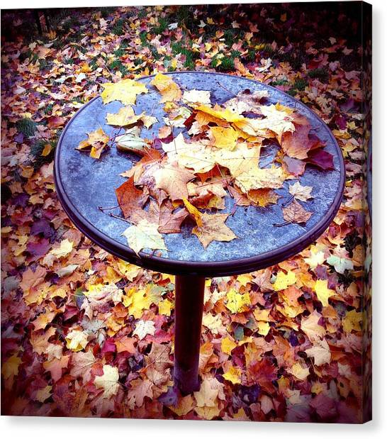 Tables Canvas Print - Fall Foliage On Table And Ground by Matthias Hauser