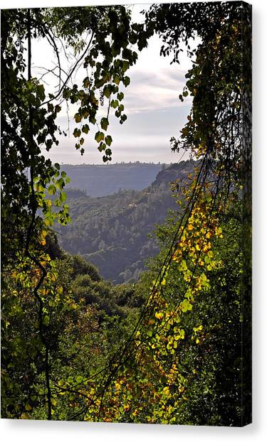 Fall Frames The Canyon Canvas Print