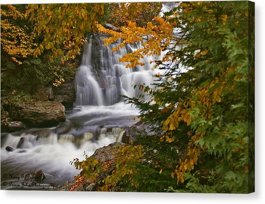 Fall In Fall - Chute Au Rats Canvas Print