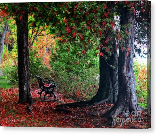 Fall In Henes Park Canvas Print
