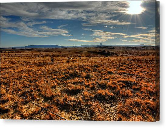 Fall In The High Desert Canvas Print