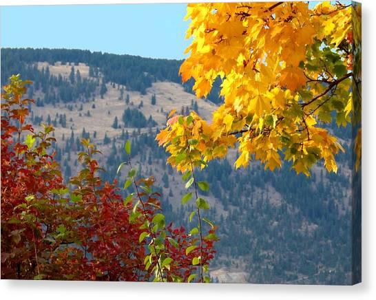 Okanagan Valley Canvas Print - Fall In The Okanagan Valley by Will Borden