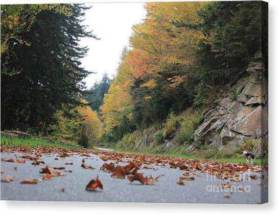 Fall In The Smokies Canvas Print