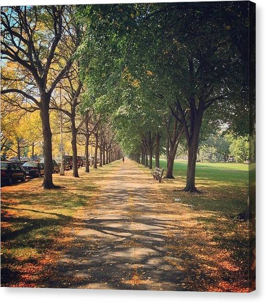 University Of Chicago Canvas Print - Fall At University Of Chicago by Jannis Werner