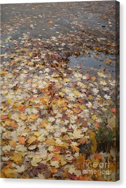 Fall Leaves And Puddle Canvas Print