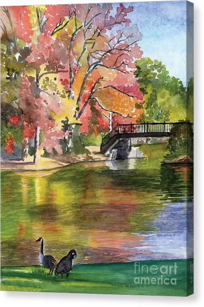 Fall Light - Roger Williams Park Canvas Print by Hollis Machala