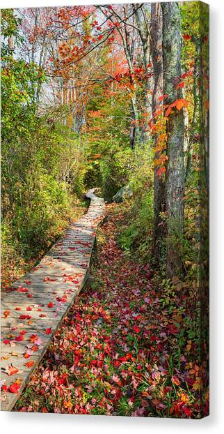 The Nature Center Canvas Print - Fall Morning by Bill Wakeley