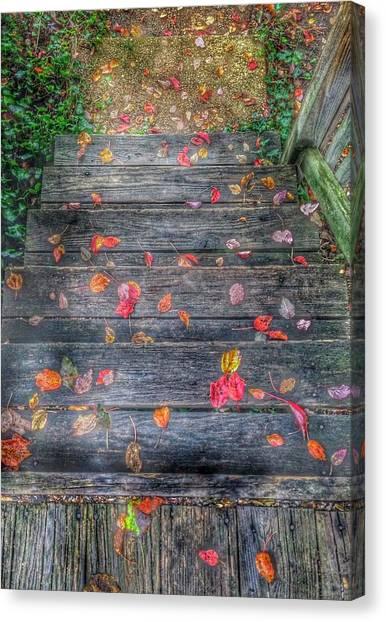 Fallen Tree Canvas Print - Fall Morning by Marianna Mills