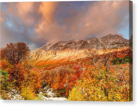 Fall On Display Canvas Print