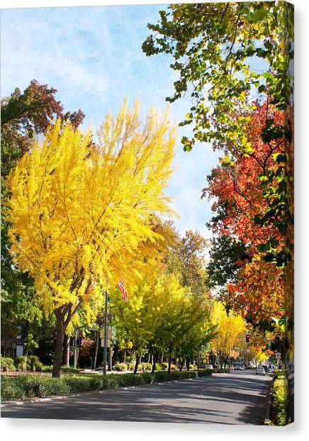 Fall On The Esplanade  Canvas Print