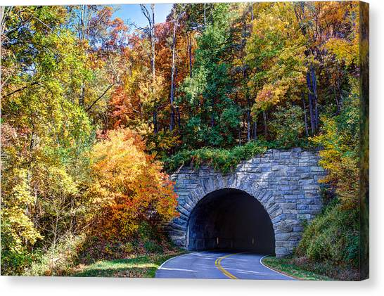 Fall On The Parkway Canvas Print