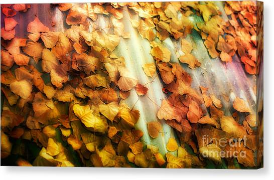 Fall On The Roof Canvas Print by Bobbi Feasel