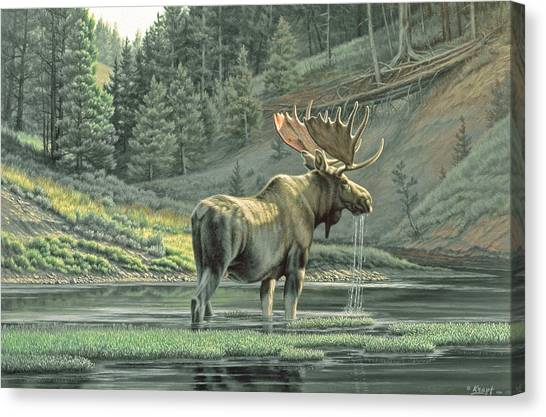 Moose Canvas Print - Fall On The Yellowstone by Paul Krapf